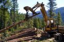 Logging operation in the Boise National Forest, Idaho.